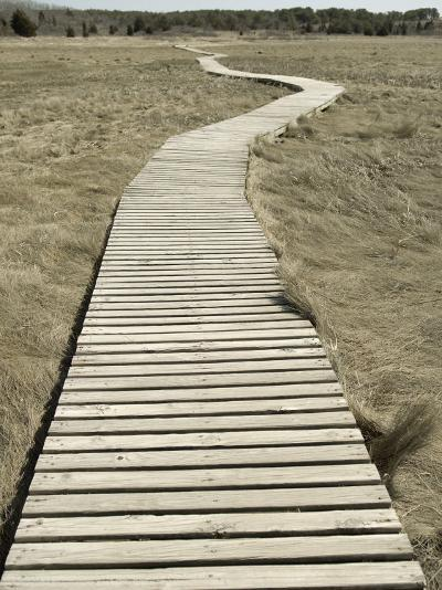 Boardwalk across a Tidal Marsh Leading to a Wooden Area at a Wildlife Sanctuary-John Nordell-Photographic Print