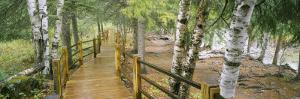 Boardwalk Along a River, Gooseberry River, Gooseberry Falls State Park, Minnesota, USA