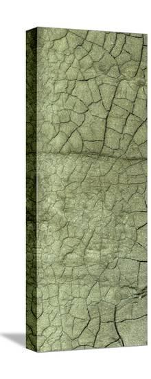 Boardwalk III-Grant Louwagie-Stretched Canvas Print