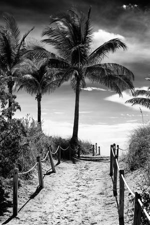 https://imgc.artprintimages.com/img/print/boardwalk-miami-beach-florida-usa_u-l-q1gdqxb0.jpg?p=0