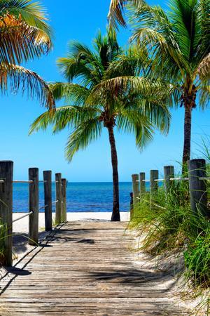 https://imgc.artprintimages.com/img/print/boardwalk-on-the-beach-key-west-florida_u-l-pz4q1f0.jpg?p=0
