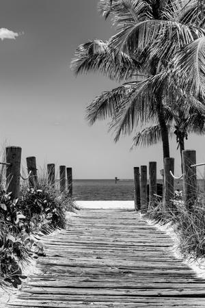 https://imgc.artprintimages.com/img/print/boardwalk-on-the-beach-key-west-florida_u-l-q1g8wpe0.jpg?p=0