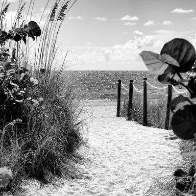https://imgc.artprintimages.com/img/print/boardwalk-on-the-beach-miami-florida_u-l-pz5pn80.jpg?p=0