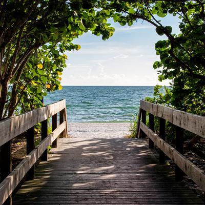 https://imgc.artprintimages.com/img/print/boardwalk-on-the-beach_u-l-pz5law0.jpg?p=0