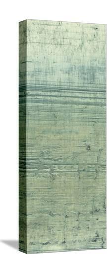Boardwalk V-Grant Louwagie-Stretched Canvas Print