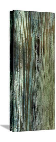 Boardwalk VII-Grant Louwagie-Stretched Canvas Print