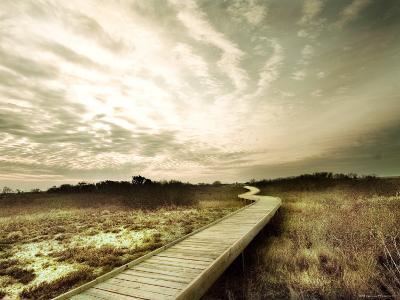 Boardwalk Winding over Sand and Brush-Jan Lakey-Photographic Print
