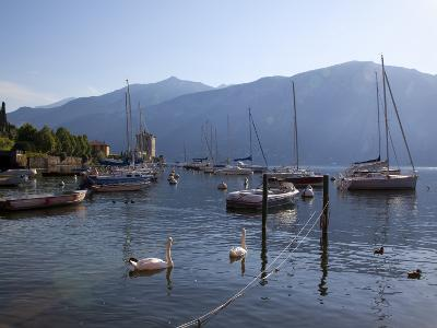 Boat Harbour and Lake, Bellagio, Lake Como, Lombardy, Italian Lakes, Italy, Europe-Frank Fell-Photographic Print