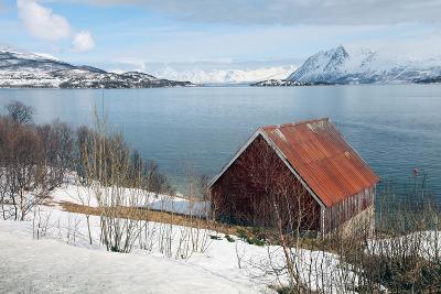 Boathouse on the Island of Kvaloya (Whale Island), Troms, Norway, Scandinavia, Europe-David Lomax-Photographic Print