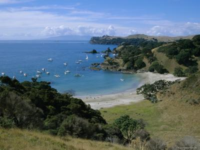 Boats at Anchorage, Waiheke Island, Central Auckland, North Island, New Zealand, Pacific-D H Webster-Photographic Print