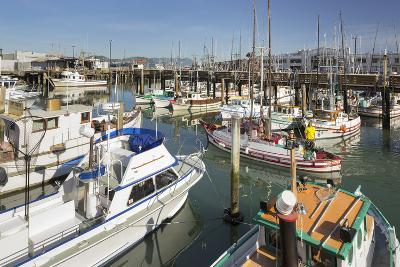 Boats at the Pier 39, San Francisco, California, Usa-Rainer Mirau-Photographic Print