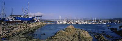 Boats Docked at a Harbor, Marina, Monterey, California, USA--Photographic Print