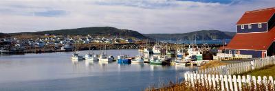 Boats in a Harbor, Bonavista Harbour, Newfoundland, Newfoundland and Labrador, Canada--Photographic Print
