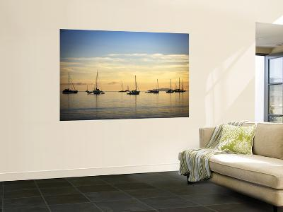 Boats in Airlie Bay at Dawn-Tim Barker-Wall Mural