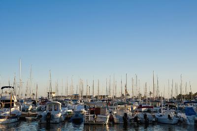 Boats in Alcudia's Port, Mallorca, Balearic Islands, Spain Dosfotos-Design Pics Inc-Photographic Print