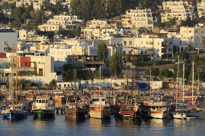 Boats in Bodrum, Turkey, Anatolia, Asia Minor, Eurasia- Richard-Photographic Print