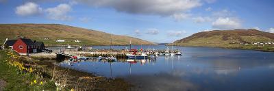 Boats in Marina; Shetland Scotland-Design Pics Inc-Photographic Print