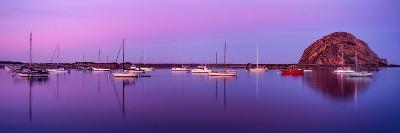 Boats moored at a harbor, Morro Bay Harbour, Morro Bay, California, USA--Photographic Print