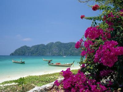 Boats Moored off Beach of Phi Phi Don Island, off Phuket, Thailand-Ruth Tomlinson-Photographic Print