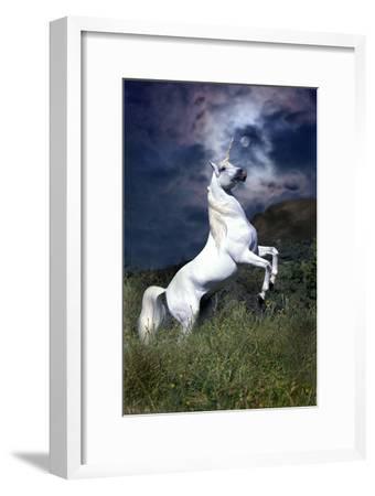 Dream Horses 045