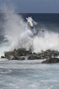 Spirit of the Sea by Bob Langrish