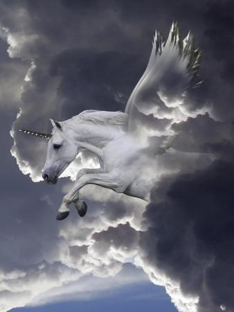 Unicorn 62