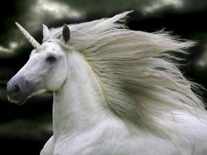 Unicorn 66 by Bob Langrish
