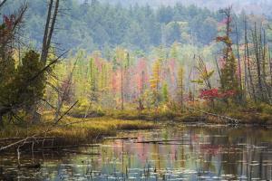 Autumn Reflections at Adirondack National Park by Bob Pool