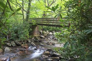 Alum Cave Trail Bridge by Bob Rouse