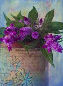 Brushy Purple by Bob Rouse