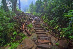 Chimney Tops Steps by Bob Rouse