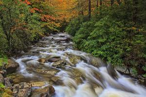 Fall Rapids 2 by Bob Rouse