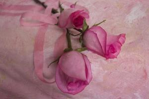 Rose and Ribbons by Bob Rouse