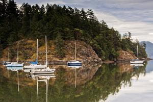 Sooke Harbor II by Bob Stefko
