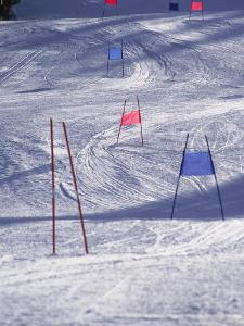Slalom Ski Race Course by Bob Winsett