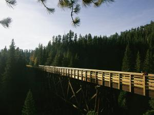 A Cyclist on the Mickelson Trail Bridge which Runs Through the Heart of the Black Hills by Bobby Model