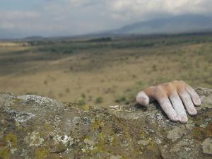 A Hand Tops a Summit in Hells Gate by Bobby Model