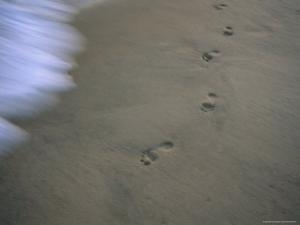 Footprints in Sand at Surfs Edge by Bobby Model