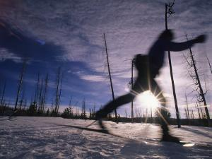 Silhouette of Of Women Cross County Skiing in Wyoming, Yellowstone by Bobby Model