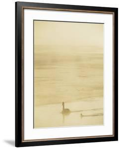 Trumpeter Swans on the Yellowstone River by Bobby Model