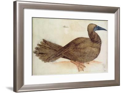 Bobo-John White-Framed Giclee Print