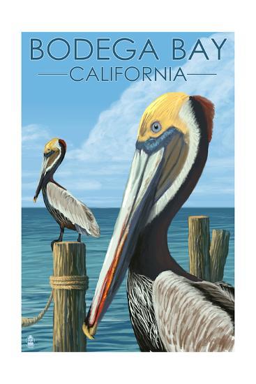 Bodega Bay, California - Brown Pellican-Lantern Press-Art Print