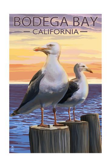Bodega Bay, California - Seagull-Lantern Press-Art Print