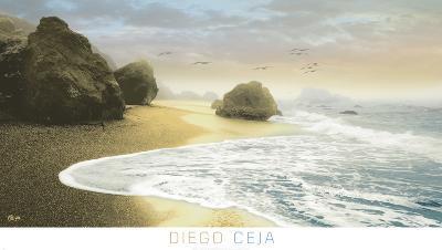 Bodega Beach 1-Diego Ceja-Art Print