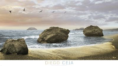 Bodega Beach 2-Diego Ceja-Art Print