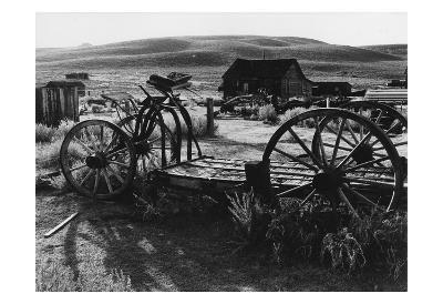 Bodi Wagon-Albert Koetsier-Art Print