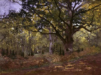 Bodmer Oak, Fontainbleau Forest-Claude Monet-Giclee Print
