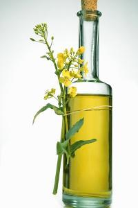 A Bottle of Rapeseed Oil with Flowers by Bodo A. Schieren