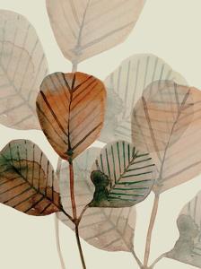 Brown Leaves 1 by Boho Hue Studio