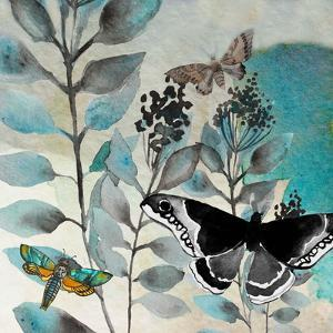 Butteryfly Perspective 2 by Boho Hue Studio
